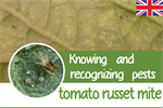 Knowing and recognizing pests