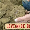 Interreg V- project 'Leve(n)de Bodem