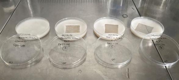 Irrigeren met druppelaars met microbiële en antiwortel eigenschappen