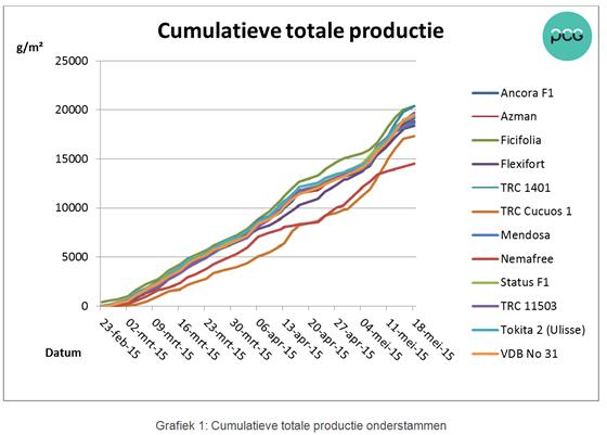 Grafiek 1: Cumulatieve totale productie onderstammen