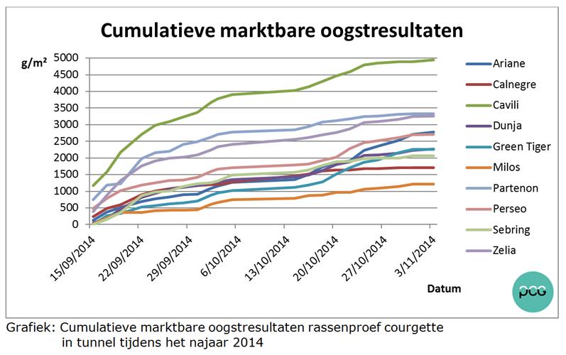 Grafiek: Cumulatieve marktbare oogstresultaten rassenproef courgette              in tunnel tijdens het najaar 2014