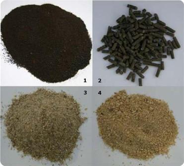 Foto 1: De toegepaste meststoffen: bloedmeel (1), kippenmestkorrels (2), sojaschroot (3), moutkiemen (4)