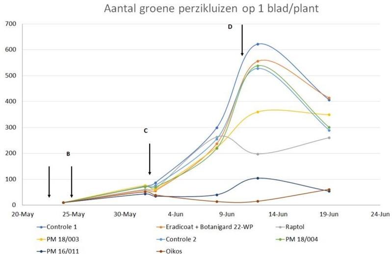 Paprika aantal groen perzikluizen op 1 blad per plant
