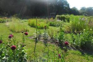 Foto 1: De Tuinen van Weldadigheid